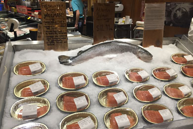 Freshwater Institute's Spring Hill Salmon on diplay at Wegmens March 2016